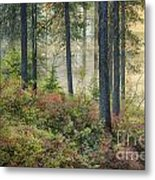 Huckleberry Patch Metal Print
