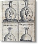 Human Development, 17th Century Artwork Metal Print