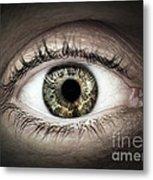Human Eye Macro Metal Print by Elena Elisseeva