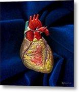 Human Heart On Blue Velvet Metal Print