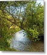 Humber River 2 Metal Print