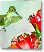 Humming Bird And Cactus Flowers Metal Print
