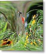 Humming Bird Digital Art Metal Print