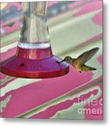Humming Bird Feeding Metal Print