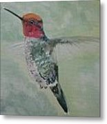 Hummingbird 3 Metal Print