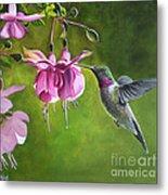 Hummingbird And Fuschia Metal Print