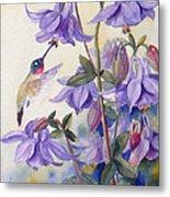 Hummingbird And Purple Columbine Metal Print