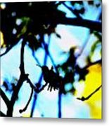 Hummingbird Art 235 Metal Print