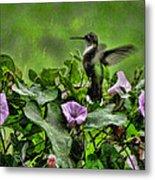 Hummingbird In The Rain Metal Print