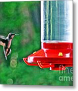 Hummingbird Love Metal Print