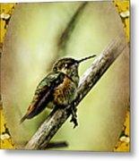 Hummingbird Noveau Metal Print