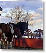 Hungry Horses Metal Print