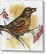 Hungry Thrush Metal Print