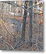 Hunters Warming Hut Metal Print