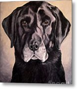 Hunting Buddy Black Lab Metal Print