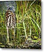 Hunting Heron Metal Print
