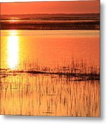 Hunting Island Tidal Marsh Metal Print by Mountains to the Sea Photo