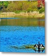 Huntington Beach State Park 1 Metal Print