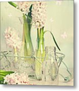 Hyacinth Arrangement Metal Print
