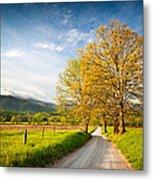 Hyatt Lane Cade's Cove Great Smoky Mountains National Park Metal Print
