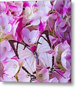 Hydrangea With Bright White Butterfly Metal Print