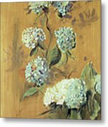 Hydrangeas Metal Print by Paul Cesar Helleu