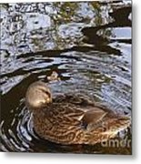 I Am Surrounded Metal Print