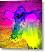 I Think I Am The Most Colorful Cow You Know  Metal Print