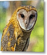 I Am Wise Metal Print