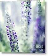 I Dream In Lavender Metal Print