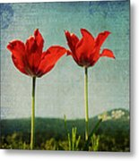 I Go To The Hills When My Heart Is Lonely Metal Print