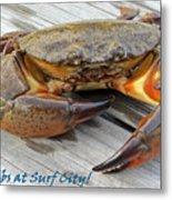 I Got Crabs At Surf City Metal Print