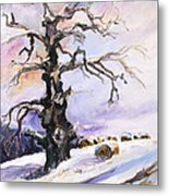 I Have Got Stories To Tell Old Oak Tree In Mecklenburg Germany Metal Print