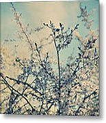 I Hope Spring Will Be Kind Metal Print