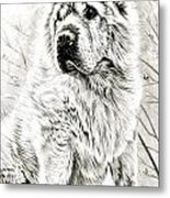 I Lost My Bone Metal Print by Janet Moss