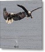 I Lost My Fish  Metal Print by Glenn Lawrence