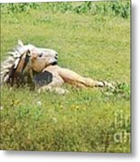 I Need A Tan  Horse Metal Print