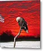 I Pledge Allegiance Metal Print