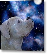 I See The Moon Metal Print by Judy Wood