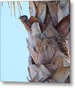I See You Two Above Me Metal Print