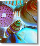 I Sell Seashells Down By The Seashore Metal Print