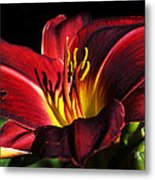 I Shadow Your Beauty Metal Print by Camille Lopez
