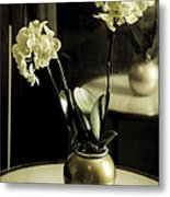 Delicate Reflection Metal Print