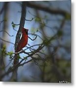I Want To Sing A Song To You Lord Metal Print