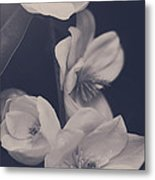 I Was Always Your Flower Metal Print by Laurie Search