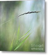 I Will Hold You Metal Print