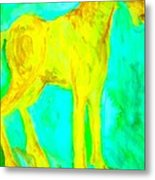 I Will Show You Everything But Will You See It  Metal Print