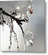 Ice And Snow-5739 Metal Print