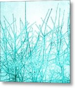 Ice Branches Metal Print