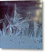 Ice Crystals Of Winter Metal Print